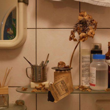 Birds | Hazen Chen's Works